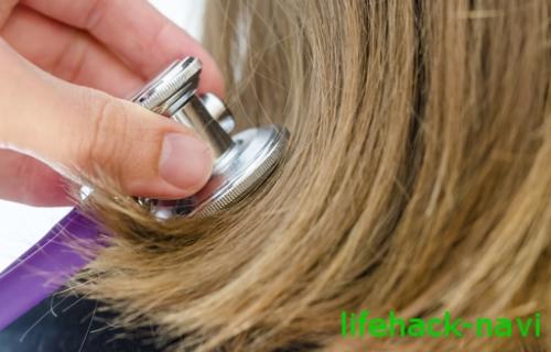 薄毛 回復 育毛剤
