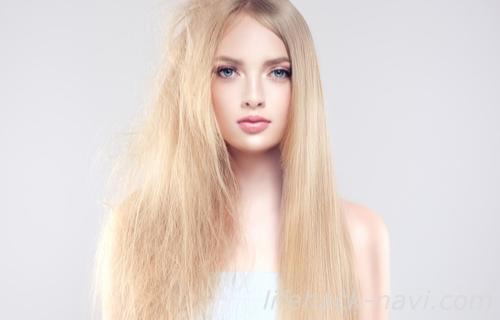 髪の毛 パサパサ 原因