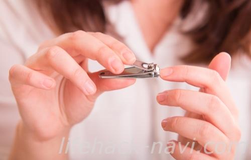 足爪 割れる 対処 爪を整える
