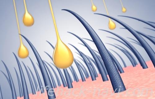 髪の毛 早く 伸ばす 育毛剤