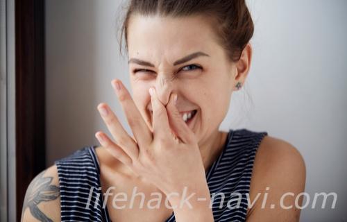 やせ菌 便の臭い