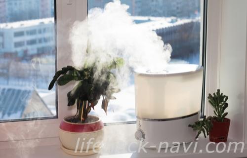 静電気 体質 対策 加湿器