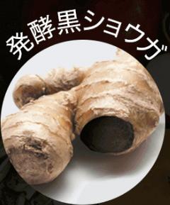 発酵黒ショウガ 効果
